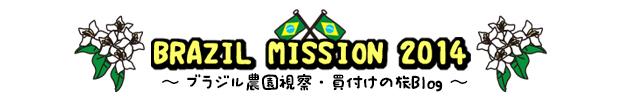 ブラジルミッション2014